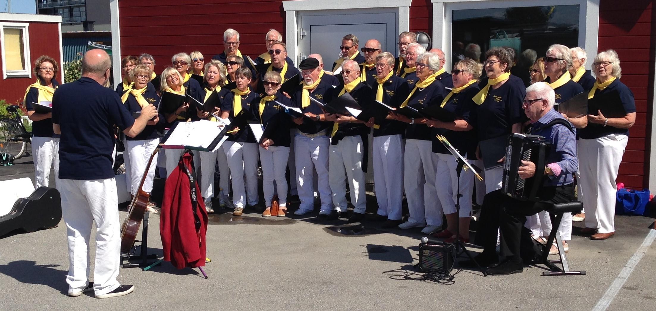 Limhamns Hamnfestival 2015